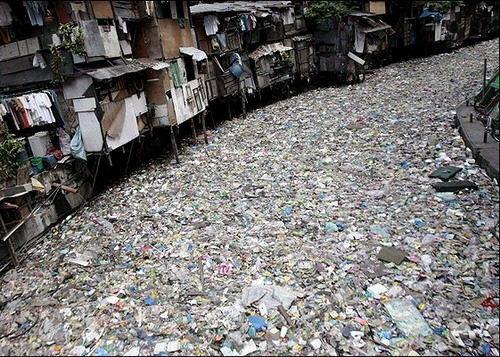 Plastik Abfall im Ozean  Wale und Delfine in der Straße